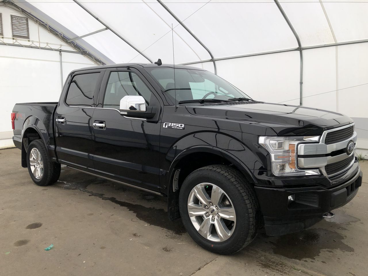 2020 Ford F-150 Platinum (0N6747) Main Image